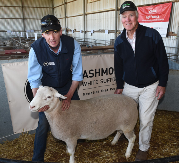 Ashmore 160301 - purchased in 2017